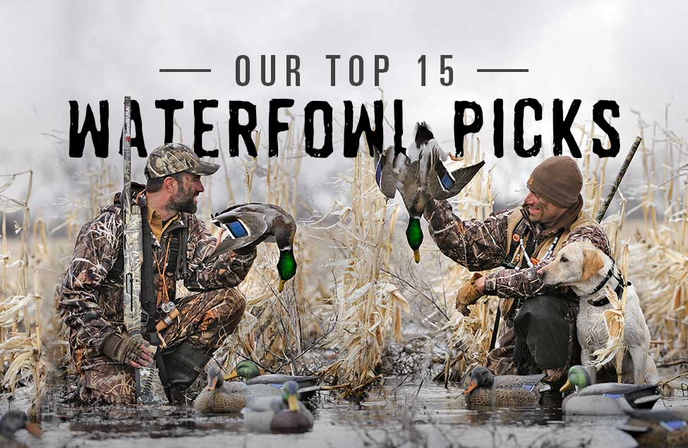 Our Top 15 Waterfowl Picks
