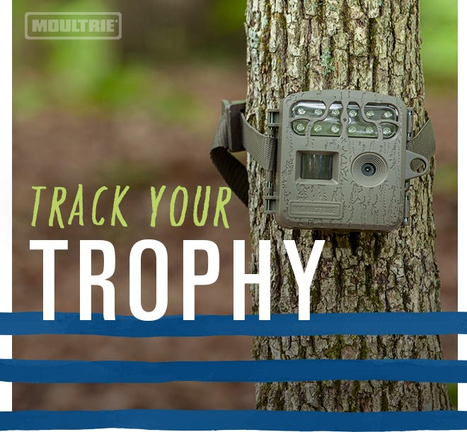 Track Your Trophy, Moultrie Trail Camera on tree