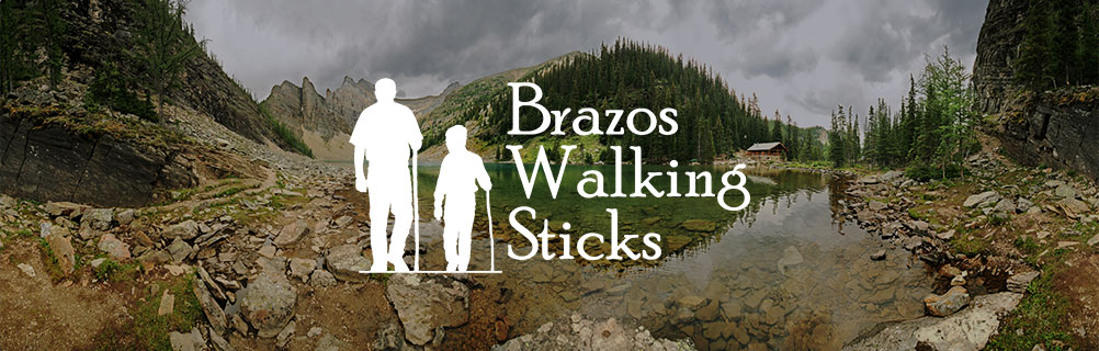 Brazos Walking Stick