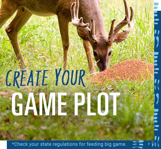 Create Your Game Plot